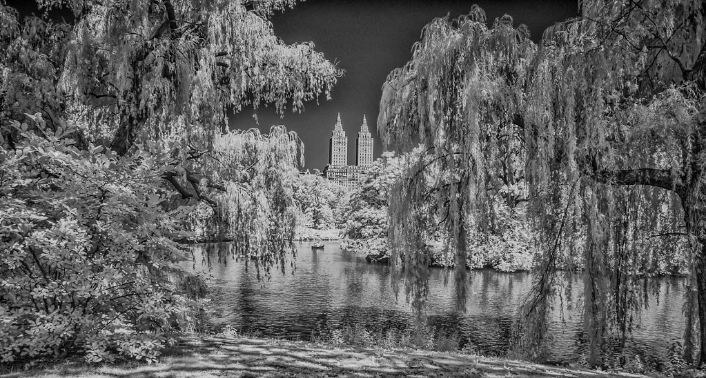 NYC Central Park IR